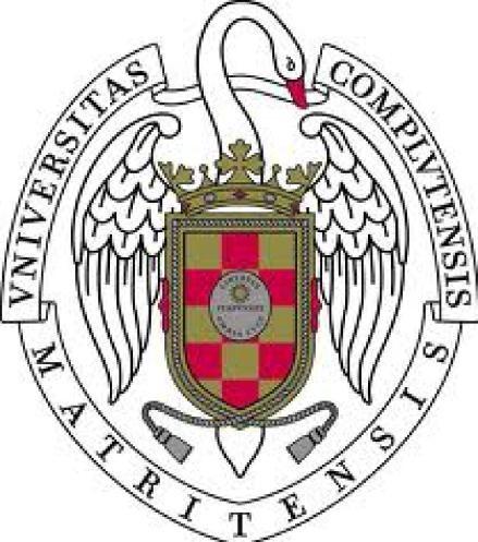 escudo de la universidad complutense